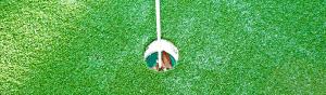 18mm ProPutt Grass - Wholesale artificial grass Perth for lawns