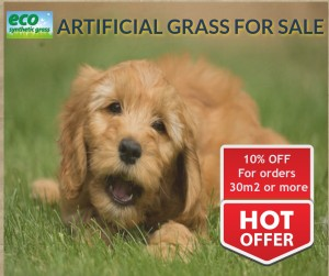 Pet friendly artificial grass for sale in Perth