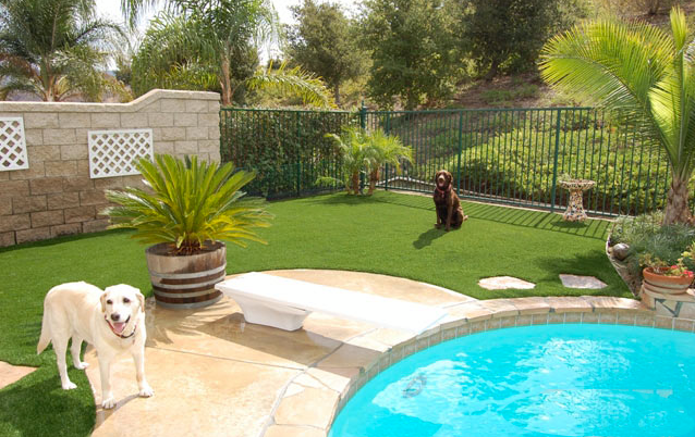 Pet friendly artificial lawn for pool areas