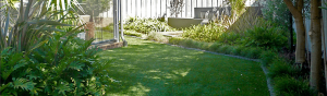 Eco Summer 35mm - Wholesale artificial grass Perth for lawns