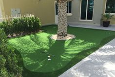 Synthetic Putting Green Front Yard